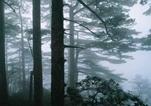 Пейзажный район Юньгу (Долина облаков) гор Хуаншань