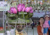 Тюльпан «Готай», получивший свое название от первой леди Пэн Лиюань, появился в Пекине