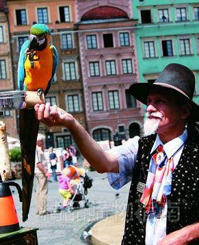 Варшава – город, который стоит увидеть собственными глазами