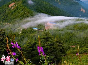 Проведение праздника Дуаньу: наслаждение свежим воздухом в горах Улиншань