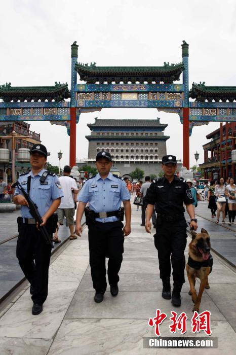 Пекинская полиция подключает собак к борьбе с терроризмом