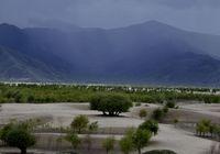 В Тибете построили «зеленый щит» для реки Брахмапутра