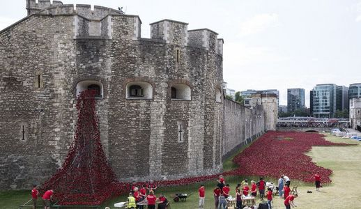 Тысячи керамических маков появились у лондонского Тауэра в честь 100-й годовщины начала Первой мировой войны
