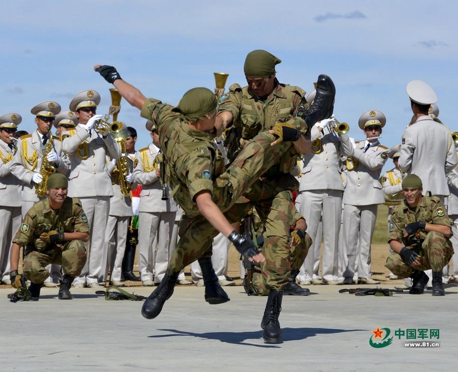 Мирная миссия 2014: таджикистанские войска демонстрируют мастерство и навыки