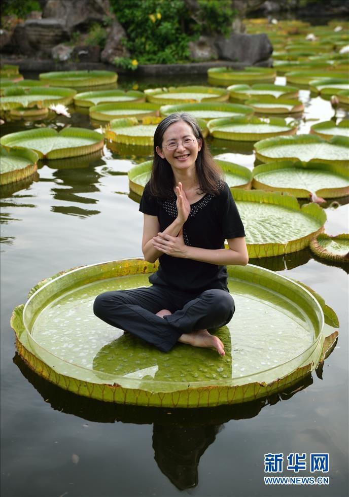 Город Тайбэй: туристы плавают вместе с королевскими лотосами