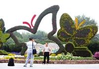 1 октября в 373 парках Пекина будет бесплатный вход