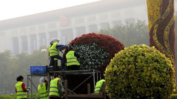 Пекин: для встречи саммита АТЭС на улице Чанъаньцзе и площади Тяньаньмэнь будет заменено более 450 тыс цветочных горшков
