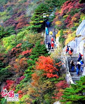 Очаровательные осенние пейзажи гор Хуаншань