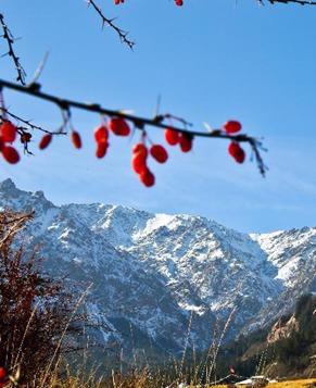 Осенние пейзажи в горах Циляньшань