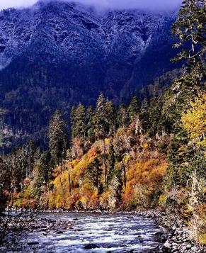 Красивые пейзажи Линьчжи в Тибетском автономном районе