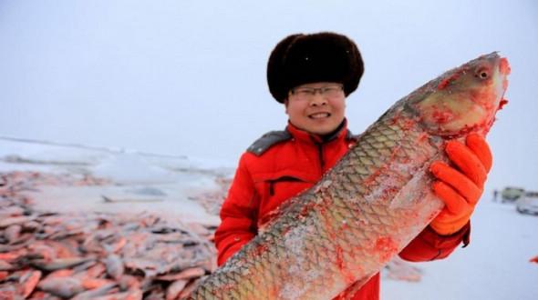 Зимний лов на озере Бостэн, Синьцзян
