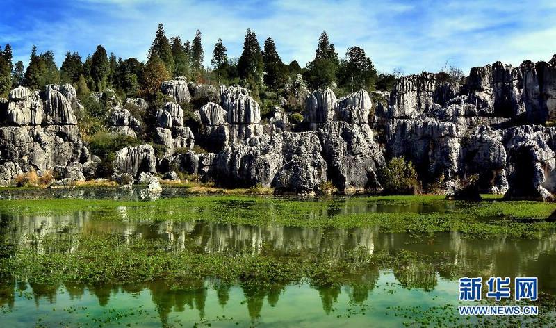Фото: Каменный лес в городе Куньмин