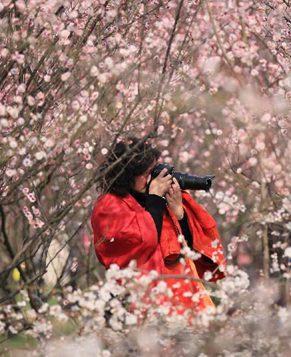 Серия фотографий: приход весны