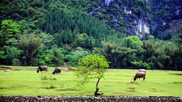 Прекрасные пейзажи в туристическом районе Лицзян (4 фото)
