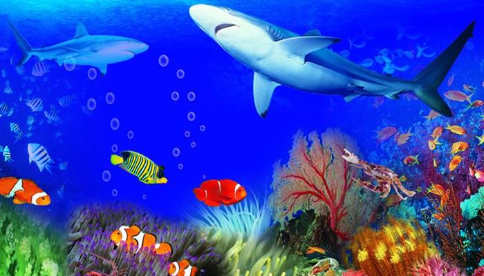 Любование рыбами в Подводном мире