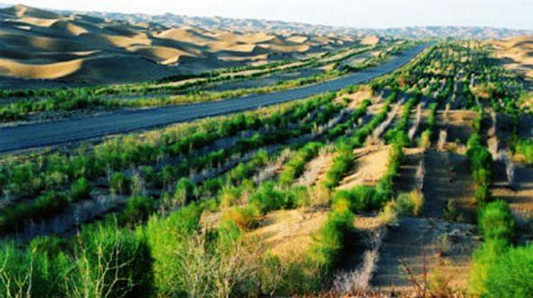В 13-й пятилетке Китай будет бороться с опустыниванием земель на площади в 10 млн гектаров