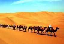 Страны Центральной Азии взяли на себя инициативу совместно с Китаем строить Экономический пояс Шелкового пути