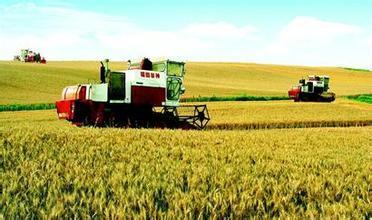 Китай и Россия углубляют сотрудничество, сельскохозяйственные предприятия извлекают выгоду