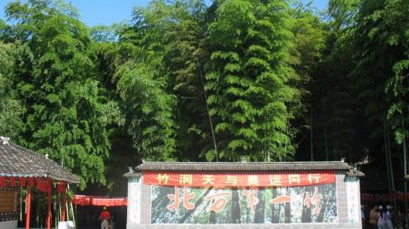 Живописный район вокруг бамбуковой пещеры в городе Жичжао