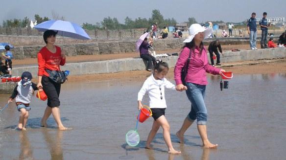 Парк для сбора морепродуктов Люцзявань в городе Жичжао