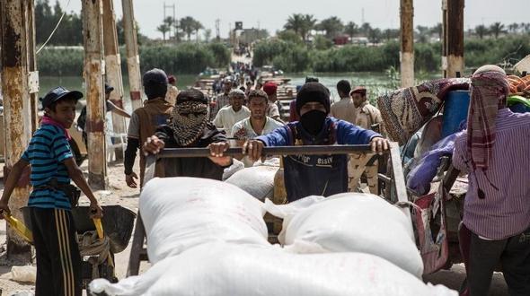 Армия Ирака отвоевала часть пригородных районов на юге города Рамади