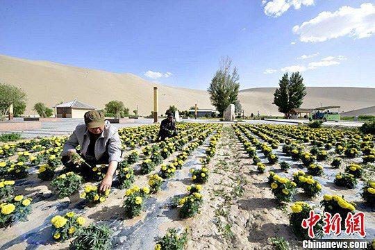 В районе озера Юеяцюань в горах Минша пески и травы отражаются друг в друге