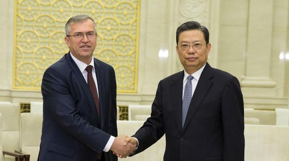 Чжао Лэцзи провел встречу с делегацией Народно-демократической партии Таджикистана