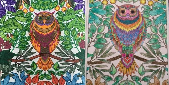 Раскраски секретный сад