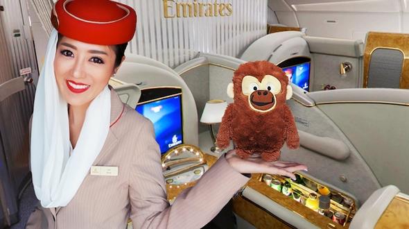 Красивейшие стюардессы мира