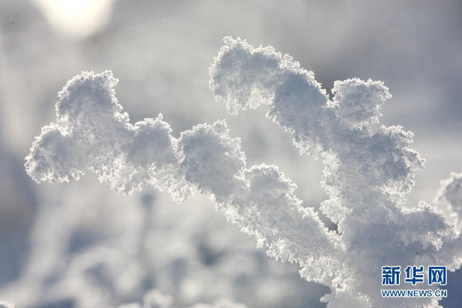Очаровательные пейзажи гор Тяньшань после снегопада