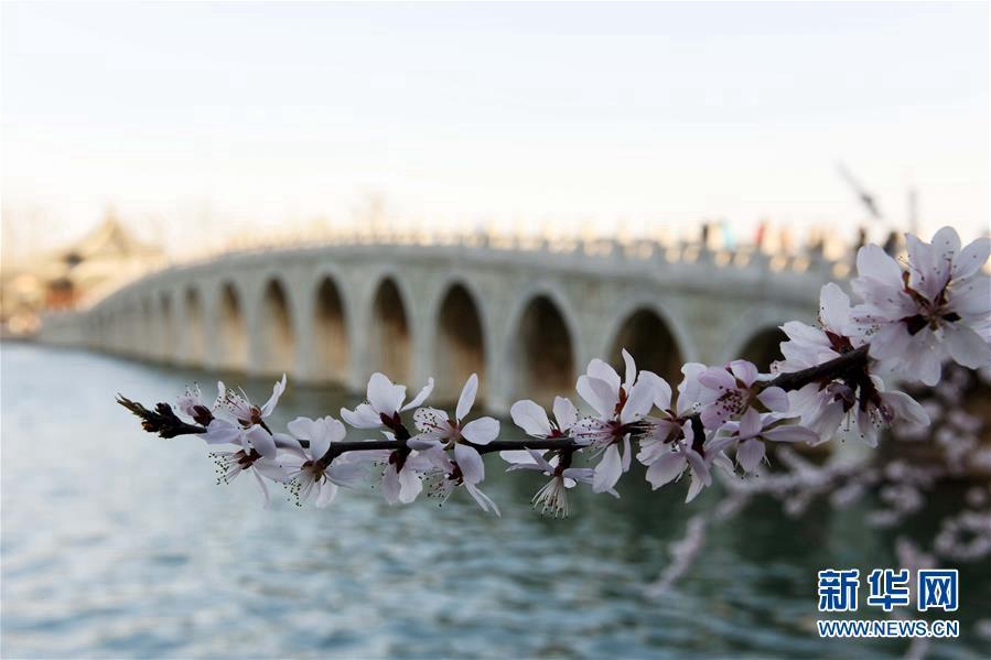 Очаровательные весенние пейзажи в парке Ихэюань