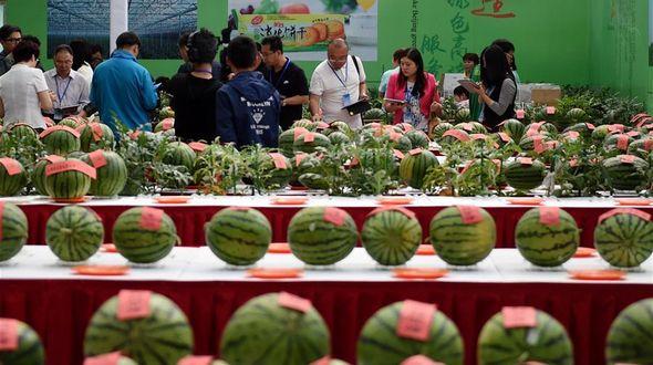 Фестиваль арбузов в Пекине