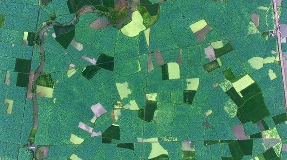 Лотосовые поля в Гуанси-Чжуанском АР