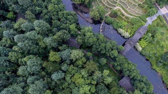 Сохранение и развитие природной среды в Гуйяне