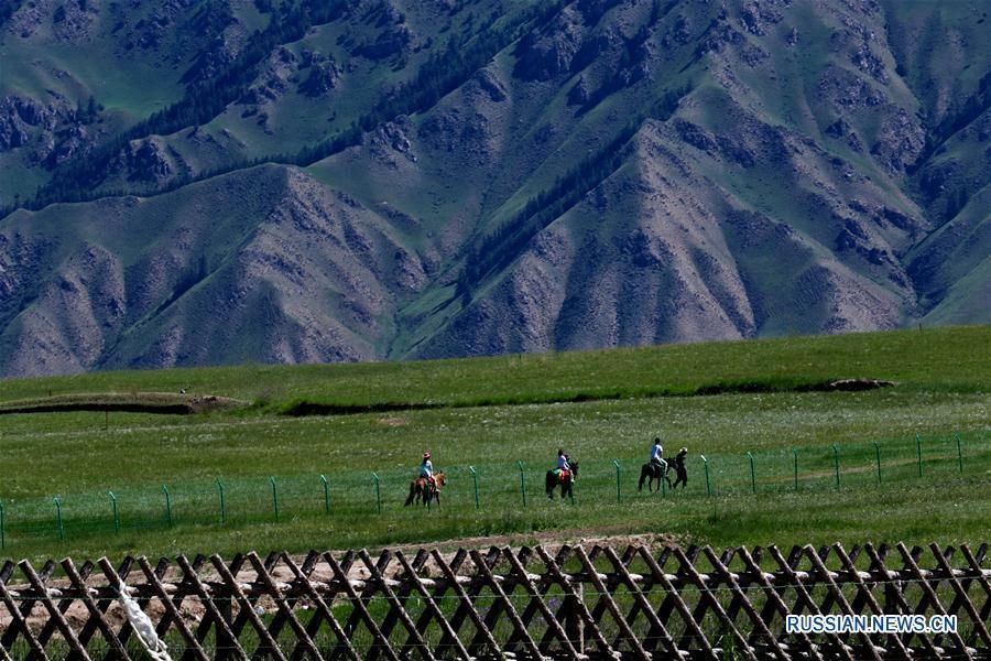 Туризм у подножия гор в провинции Ганьсу