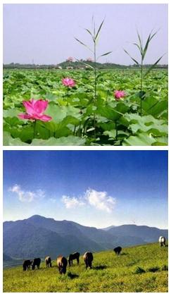 Пять мест вблизи Пекина, рекомендуемые для проведения отпуска во время Праздника середины осени