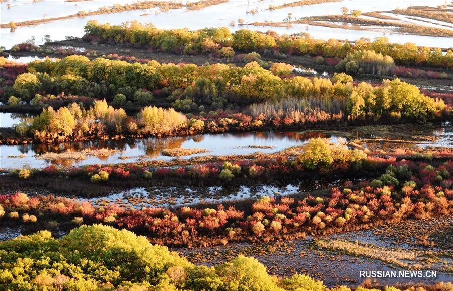 Золотая осень в самой северной провинции Китая