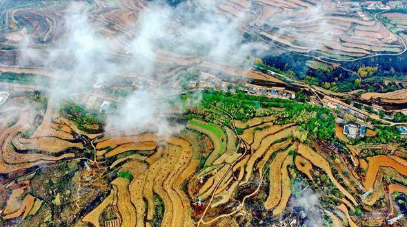 Золотые террасные поля в городе Юньчэн