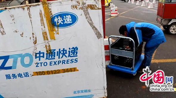 Китайский курьер