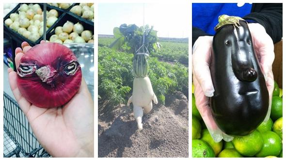 Необычные овощи и фрукты