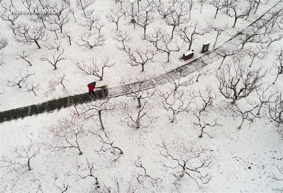 Весенний снег в парке Таохуау