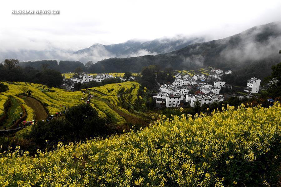 Аромат весны в Уюане