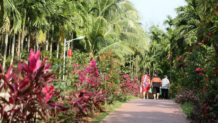 Уезд Бэйжэн города Цюнхай в провинции Хайнань: развитие сельского туризма увеличивает доходы местных жителей