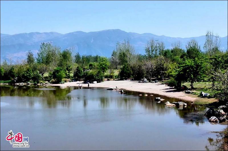 Апрельский водно-болотный парк Цюнхай – самый красивый вид в мире