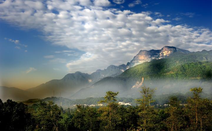 Top-8 лучших мест для сбора чая в Китае