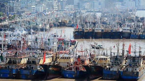 С 1 мая в Китае введен сезонный запрет на ловлю рыбы в заливе Бохай, Желтом и Восточно- Китайском морях