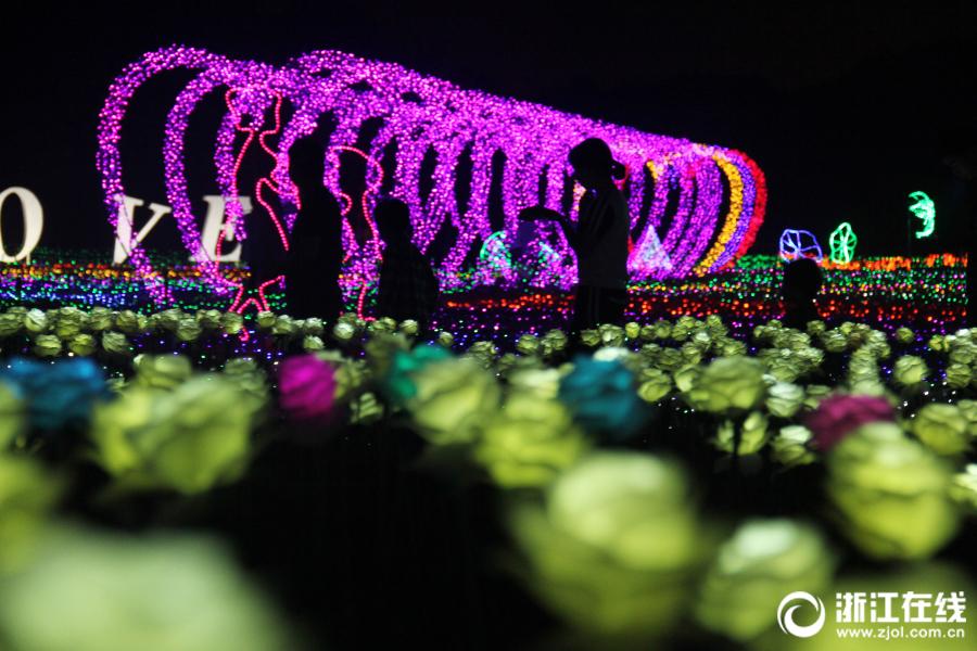 Светодиодные розы горят в уезде Тунлу