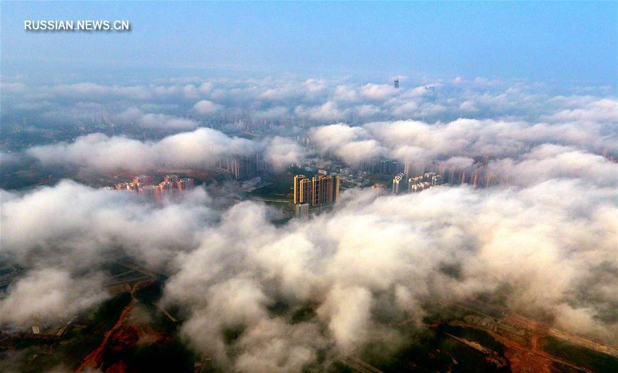 Туман над 'зеленым городом'