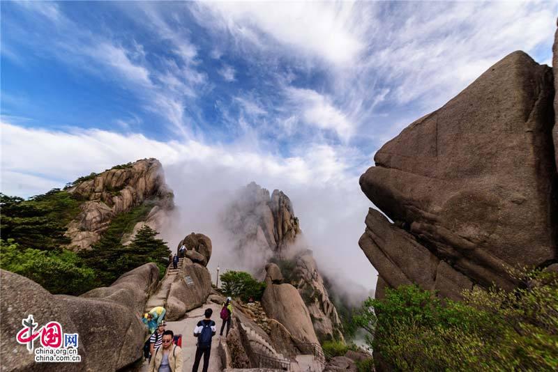 Невероятное облачное море и азалии в горах Хуаншань