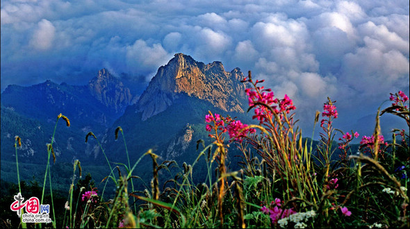 Красивые летние пейзажи горы Улиншань